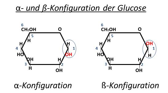 a- und ß-Konfiguration der Glucose