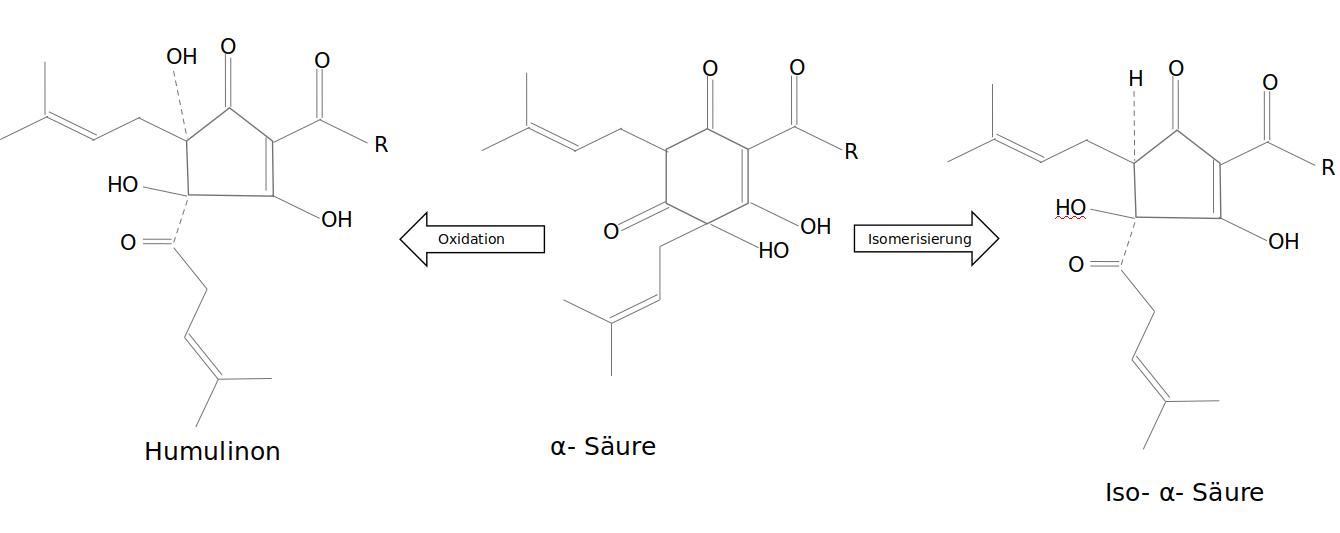 Isomerisierung und Oxidation