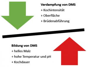 DMS-Gleichgewicht