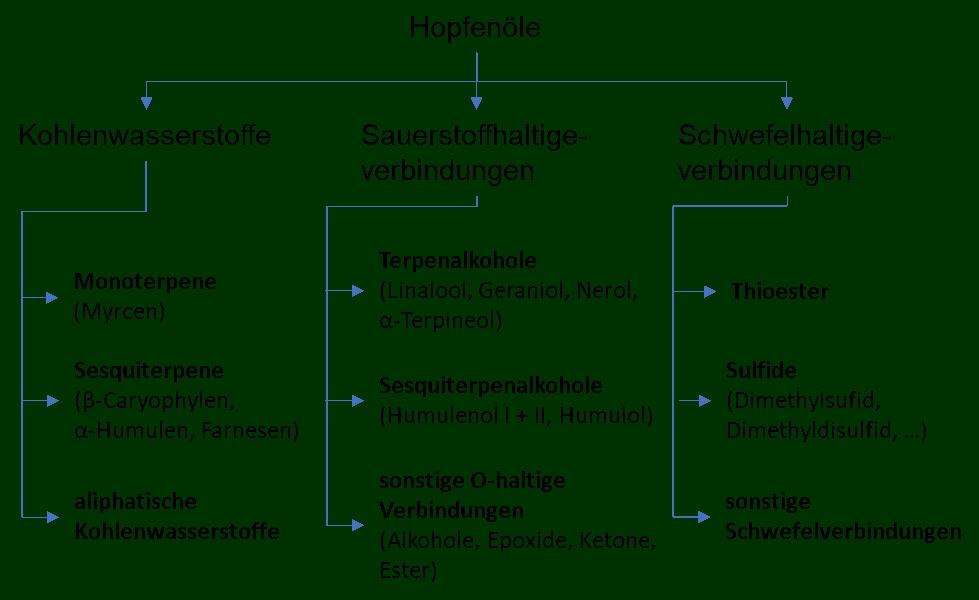 Einteilung der Hopfenöle nach Sharpe und Laws